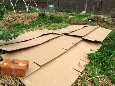 Image result for cardboard layer on ground